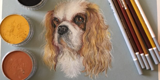 custom pet dog cat portrait: my new Etsy shop now open for commissions!