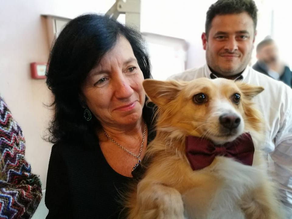 dogs welcome at our vegan wedding